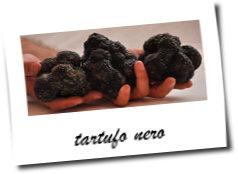 tartufo nero di Norcia